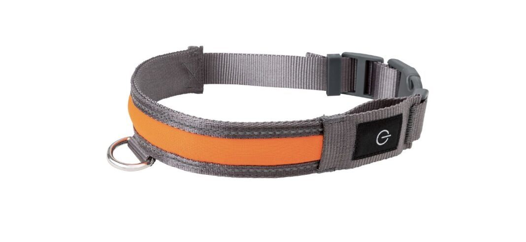 collar perro ajustable led