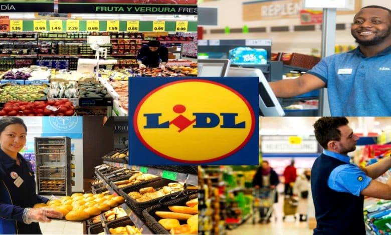 Conoce las nuevas vacantes de empleo en LIDL
