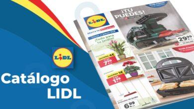 Catálogo Lidl de artículos para la última semana de septiembre